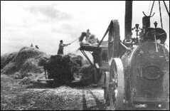 1946 - mlácení obilí po válce v Butovicích